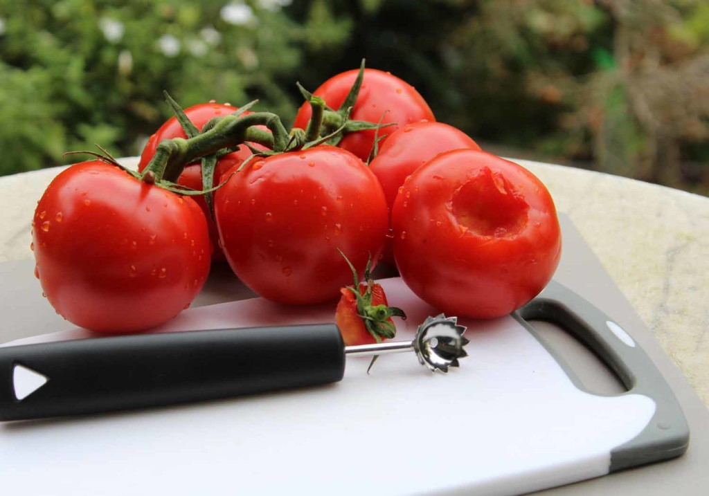 2071 Tomatenstrunkentferner LowRes